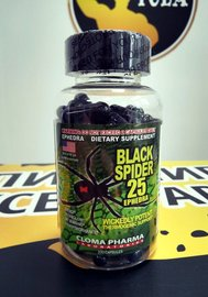 Black Spider (25 ECA)